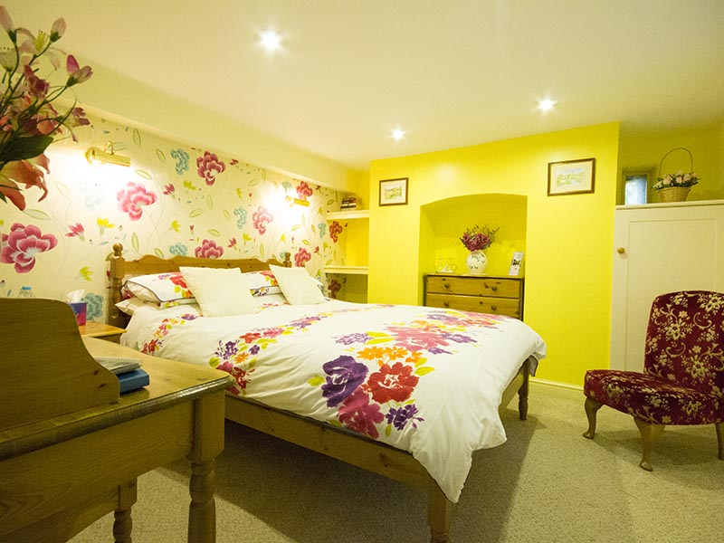 Double Bedroom at Plas Bwlch Bed and Breakfast