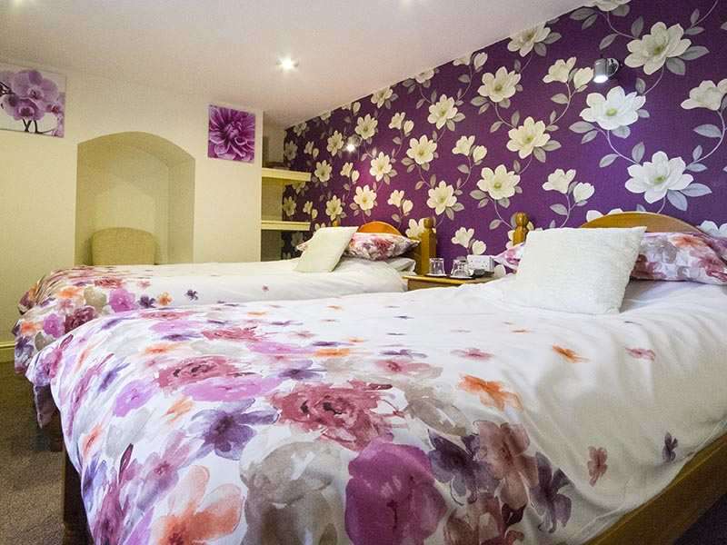 Twin Bedroom at Plas Bwlch Bed and Breakfast